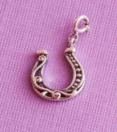 Good Luck Horseshoe Charm composition picture