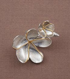 Silver Champa Brooch with Gold Accents by fourseven