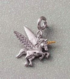 Believe In Magic Unicorn Charm composition picture